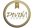 franchising-brasil-empresas-divina-terra