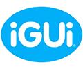 franchising-brasil-empresas-igui